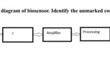 Given below is the diagram of biosensor. Identify the unmarked component.